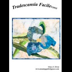 Tradescansia Facile Quilt Pattern
