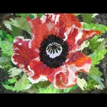 Papaver Rouge - Red Poppy Quilt
